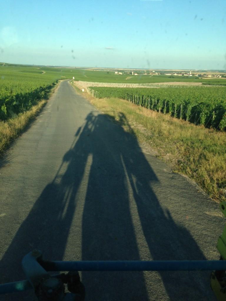 tracteur vigne champagne