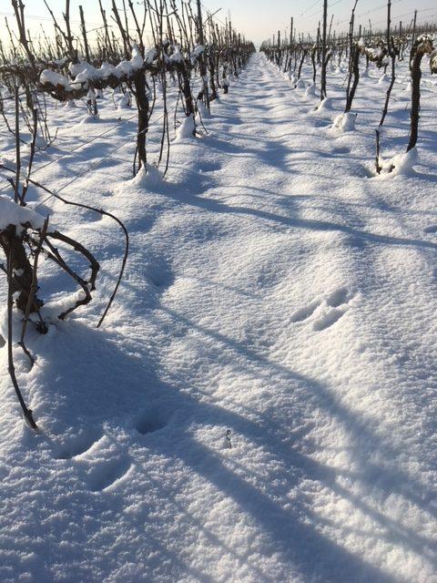 neige coteau